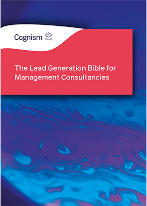 The Lead Generation Bible for Management Consultancies BANNERS V1 FINAL-04