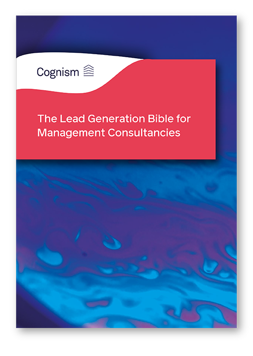 The Lead Generation Bible for Management Consultancies BANNERS V1 FINAL-03